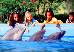SeaWorld San Antonio (Photo: SACVB/SeaWorld San Antonio)