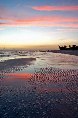 Sanibel Island Beach Sunset