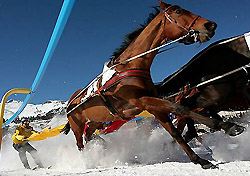 Skikjoering at White Turf in St. Moritz, Switzerland (Photo: swiss-image.ch/Photo by Andy Mettler)