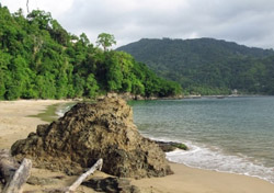 Tobago  Unlike its metropolitan and party-hardy big brother Trinidad, little Tobago is content to be a laid-back and natural Caribbean beauty. With the western hemisphere's old