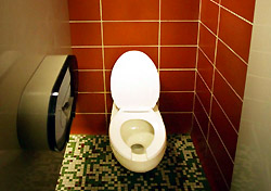 Bathroom: Stall with Toilet (Photo: Index Open)