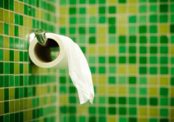Bathroom: Toilet Paper against Green Tile (Photo: iStockphoto/Enrico Fianchini)