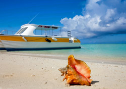 Turks and Caicos: Beach with Boat and Seashell (Photo: Thinkstock/iStockphoto)