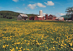 Vermont - Farm scene near Waterbury (Photo: Thinkstock/Stockbyte)