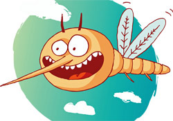 Wildlife: Mosquito, Illustration (Photo: Shutterstock/justone)