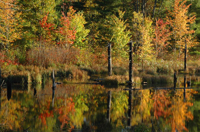 Hayward Lakes, Wisconsin